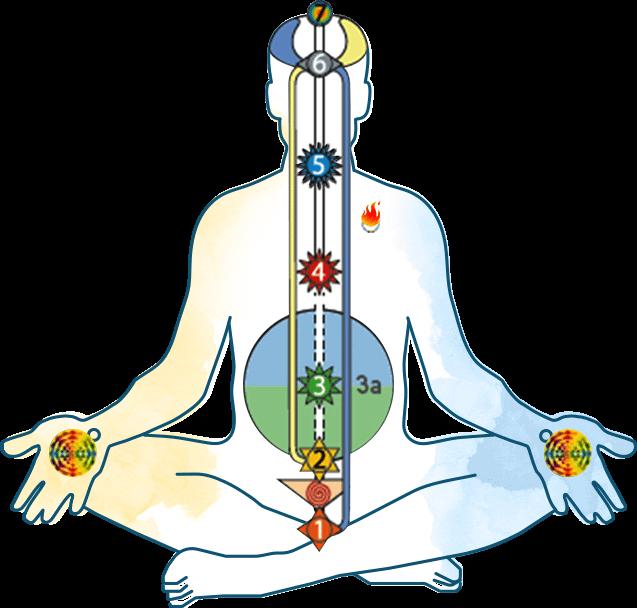 The 7 primary Chakras