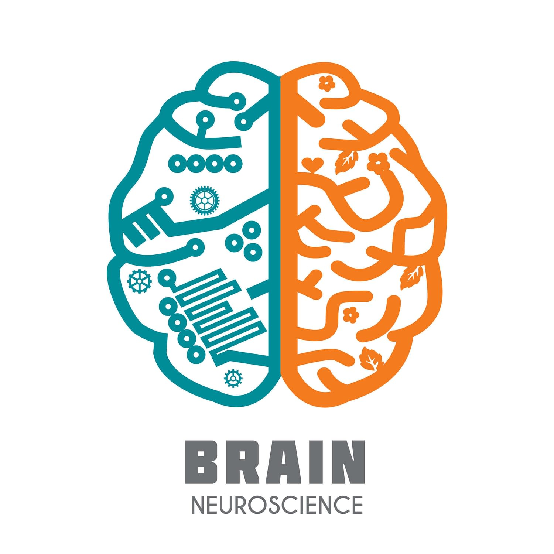 Meditation impact on neurotransmitters